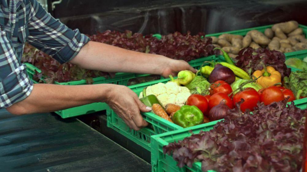 Der Preis von Gemüse und Obst steigt deutlich – Fleisch ist billiger