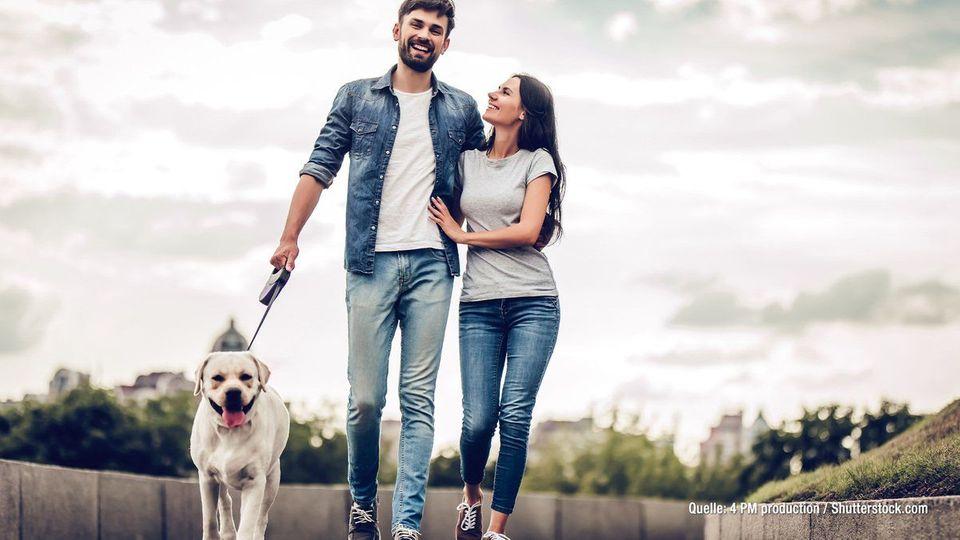 Studien belegen: Ein Hund verhilft zum Date