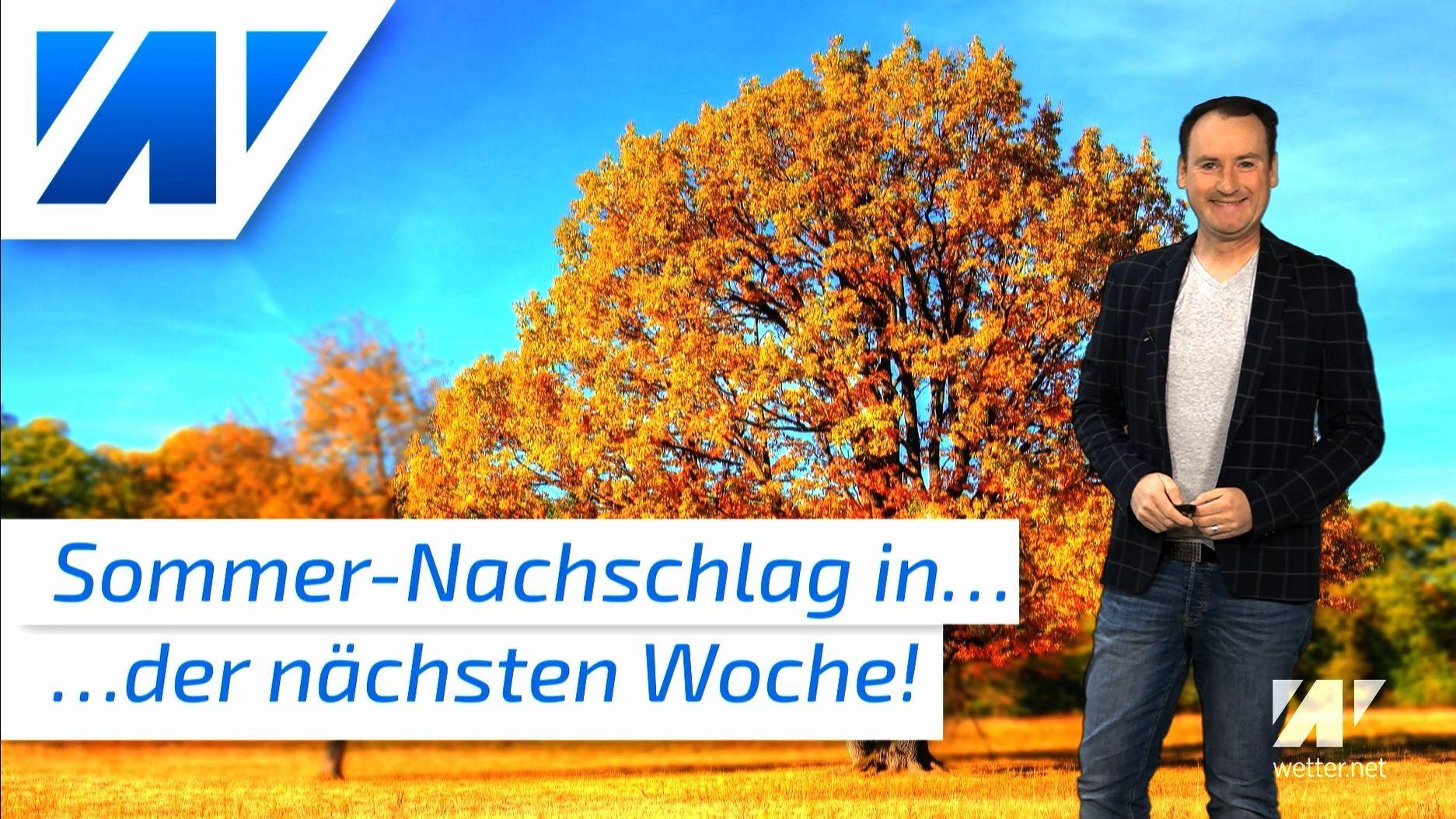 Sommer-Hammer in der nächsten Woche: Neuer Wärmepeak und viel Sonnenschein! Bestes Wetter für Weinlese!